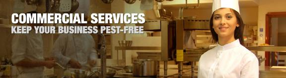 bain pest control service