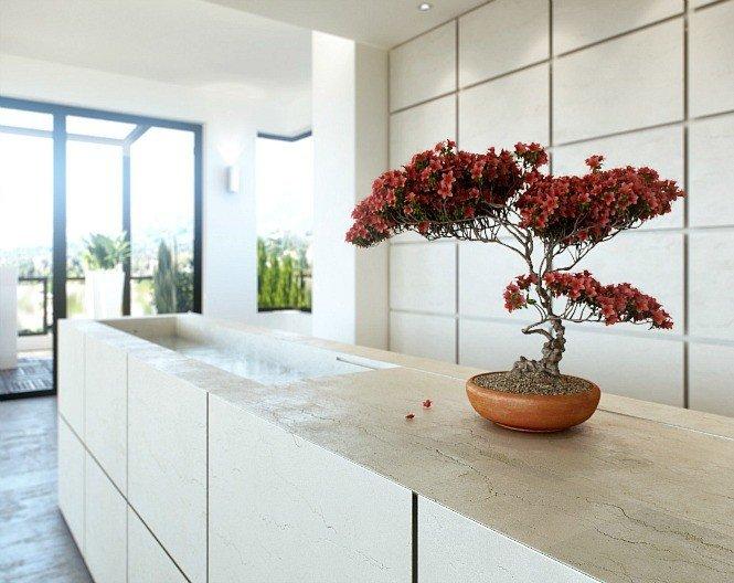 7_Ukrasite biljkama moderni enterijer