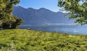 Urbanizovano zemljiste na samoj obali mora – Drazin Vrt, Kotor