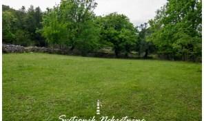 Plac povrsine 2700m2 – Zvinje, Herceg Novi