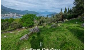 Plac povrsine 4300m2 – Zvinje, Herceg Novi