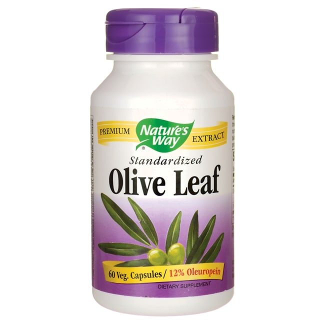 Nature's Way Standardized Olive Leaf Extract 60 Caps ...