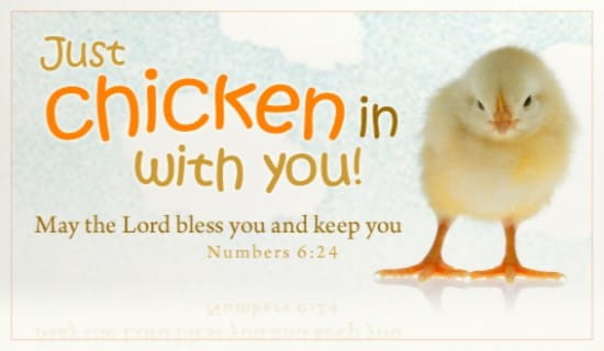 Free Chicken In ECard EMail Free Personalized Scripture