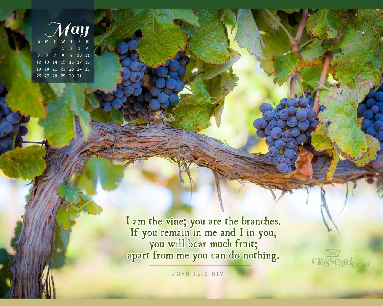 Fall Calendar Desktop Wallpaper May 2013 John 15 5 Niv Desktop Calendar Free May Wallpaper