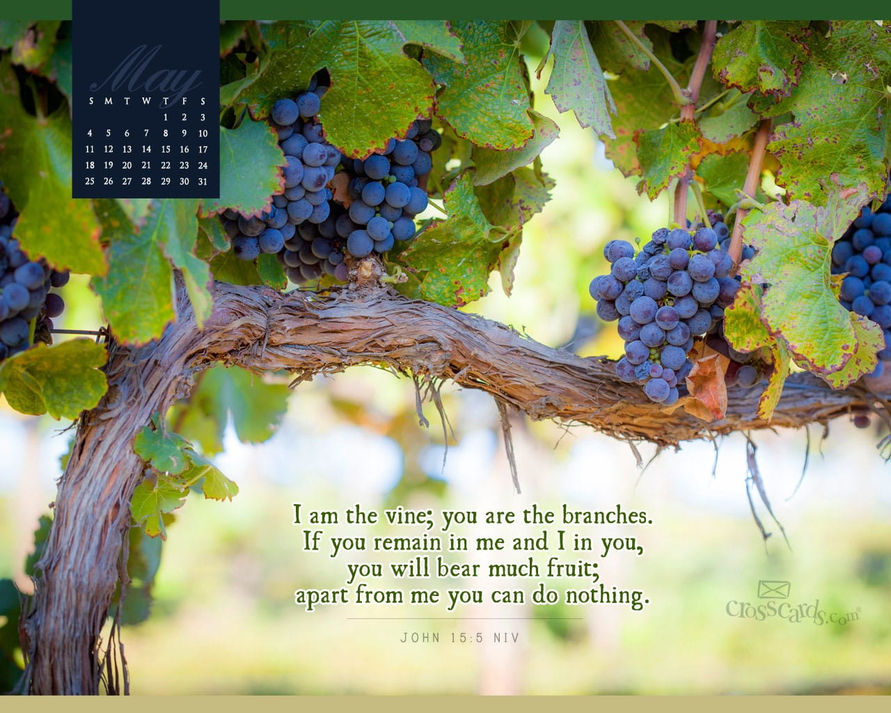 Fall Scripture Iphone Wallpaper May 2014 Vine And Branches Desktop Calendar Free May