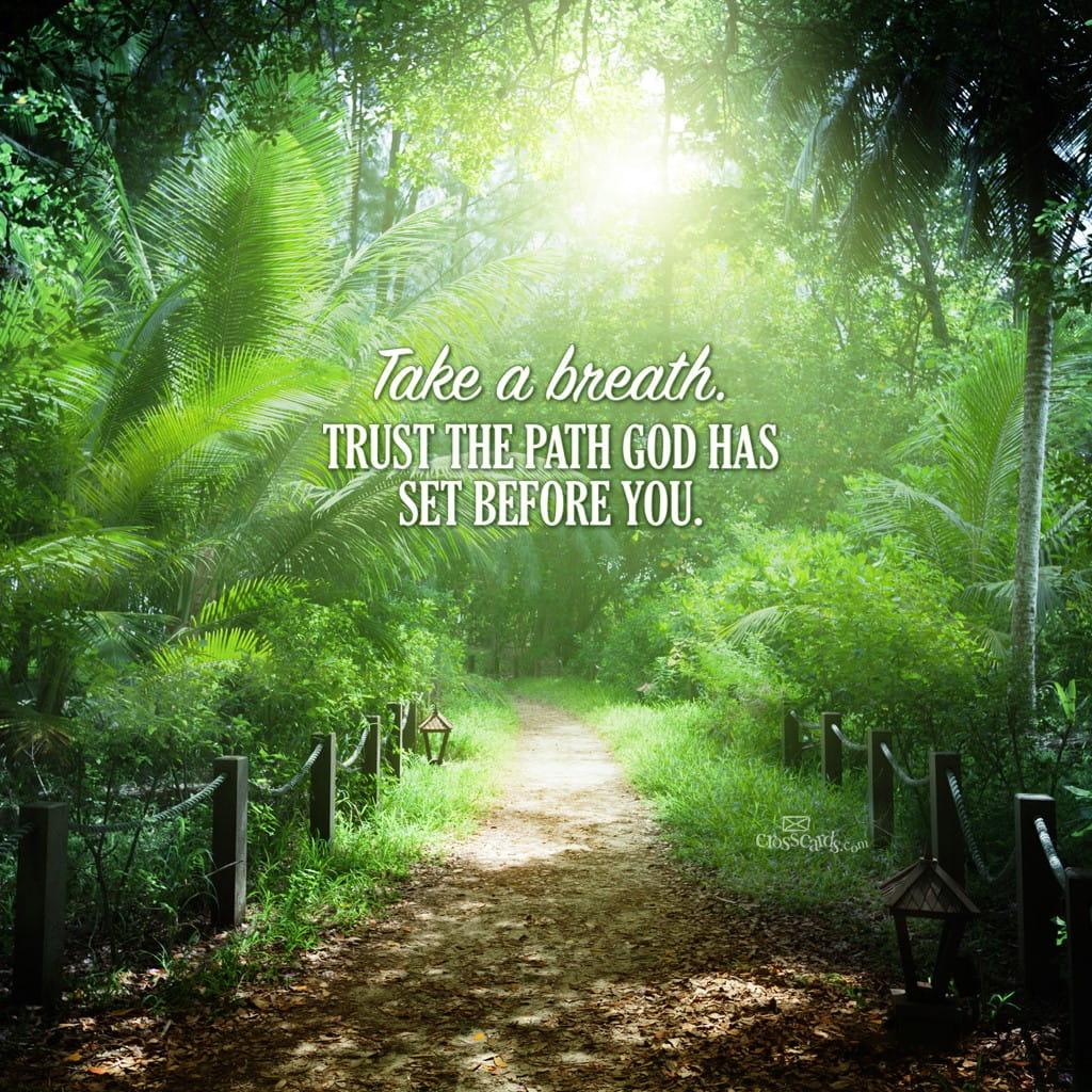 Scripture Quotes Desktop Wallpaper Trust God S Path Desktop Wallpaper Free Backgrounds