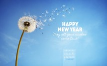 January 2016 - Wishes True Desktop Calendar- Free