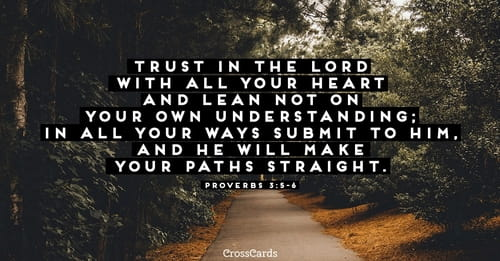 proverbs 3 5 trust