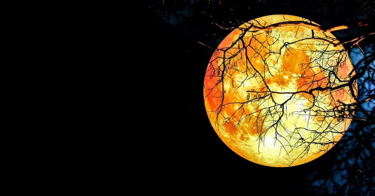 A Super Moon Blood Moon and Lunar Eclipse All In One