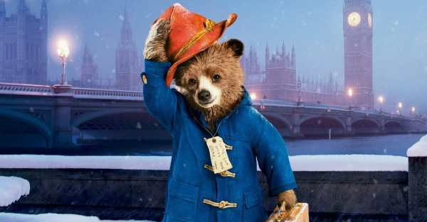paddington bear film # 52