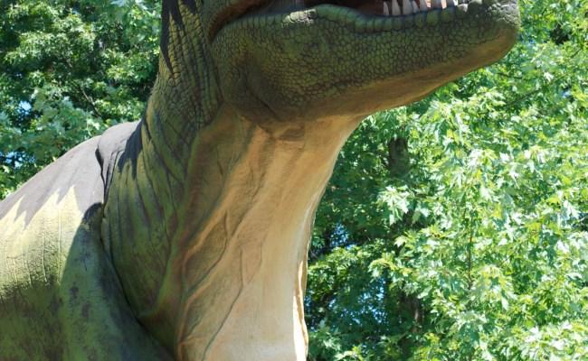 Dinosaur Invasion Coming To Rosamond Gifford Zoo This