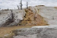 Grand Teton and Yellowstone
