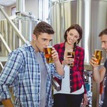 Afton Virginia Private Virginia Craft Beer Tour 9631P2