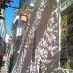 Andalucia Andalucia Marbella private walking tour 17739P28