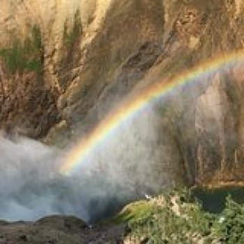Wyoming Wyoming Take a Private 2-Day Tour of Yellowstone National Park 128842P1
