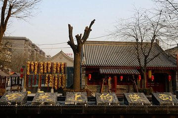 5 Days Xian Food and Culture Tour Combo Package