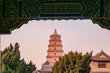Xi'an Big Wild Goose Pagoda: 2-hour Small Group Walking Tour