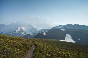 Mount Rainier Day Hike