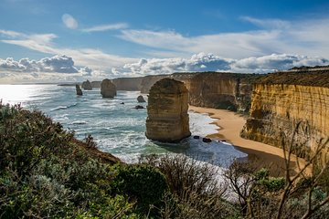 Great Ocean Road and 12 Apostles Day Trip from Melbourne