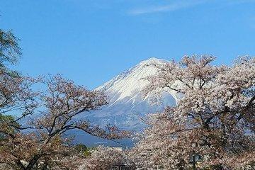The 10 Best Mt Fuji Fuji San Tours Tickets 2020 Tokyo