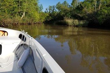 Private Boat TripTour to Tigre Delta