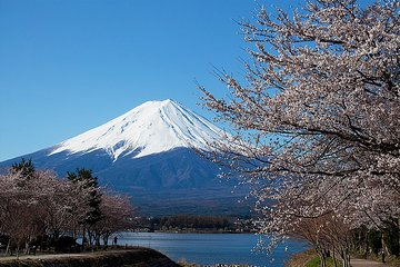 From Tokyo 4-Day Tour to Mt. Fuji, Alpine Route Round Trip