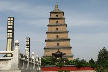 Private Tour: Xi'an Half Day - Shaanxi History Museum and Big Wild Goose Pagoda