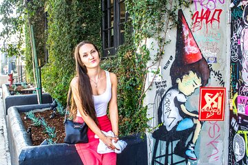 Los Angeles Graffiti Photoshoot: Posh Melrose with a Personal Photographer