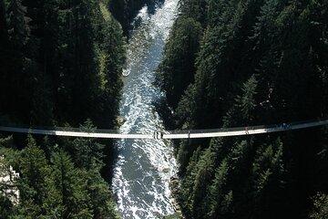 Exploring Grouse Mountain & Capilano Suspension Bridge (Small Private Group)