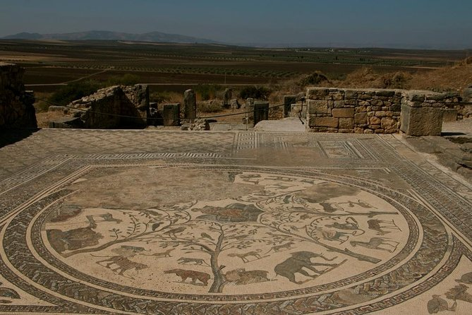 Private Day Trip To Meknes And The Roman Ruins Of Volubilis