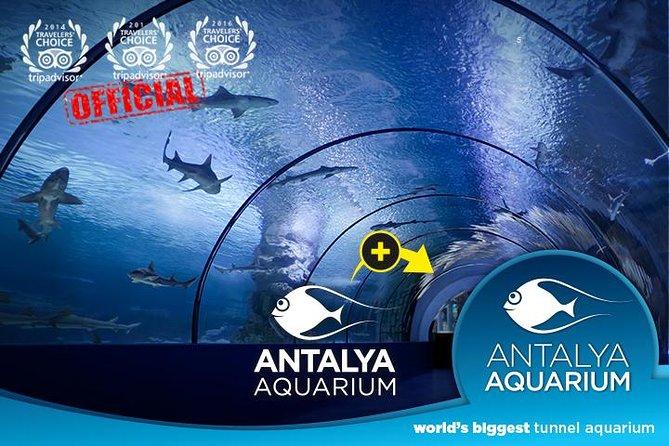 cheap antalya aquarium tours