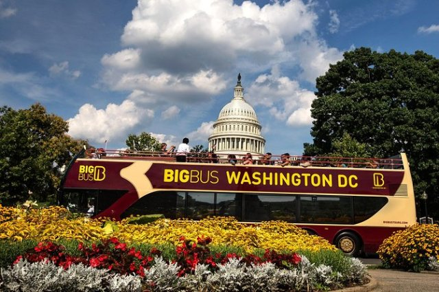 interesting things to do in dc
