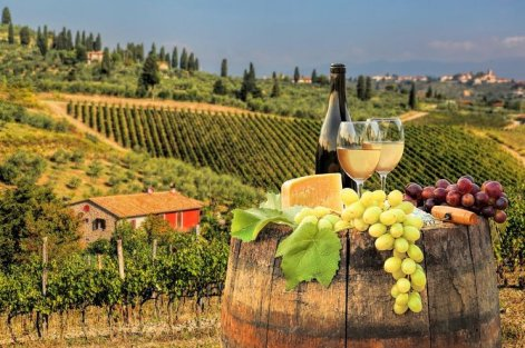 Chianti Half day Wine tour from Florence 2020