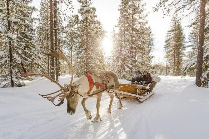 Combo Private Tour Husky And Reindeer Park By Vip Car With Guide