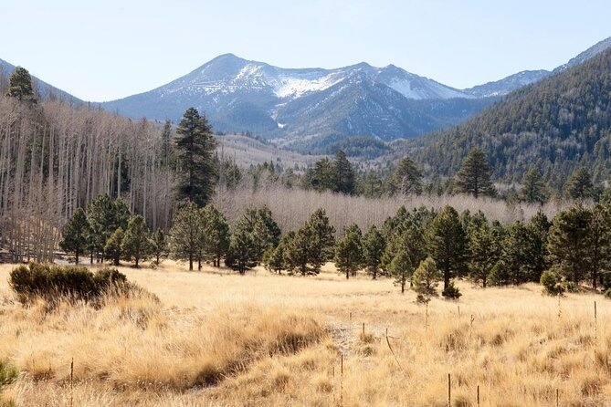 From flagstaff drive north on us 180 about 33.0 miles and turn right (east) onto fr 417 near mile marker 248 (if you reach the kaibab national forest sign, you'. The Best San Francisco Peaks Tours Tickets 2021 Flagstaff Viator