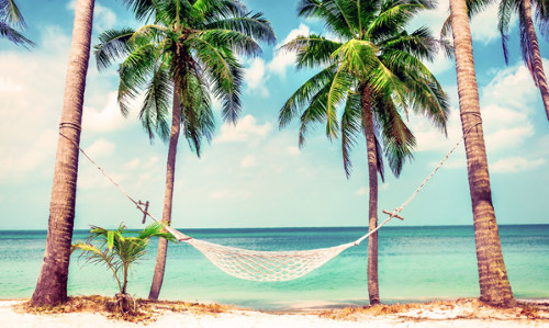 Travelplus Packages And Vacations Deals