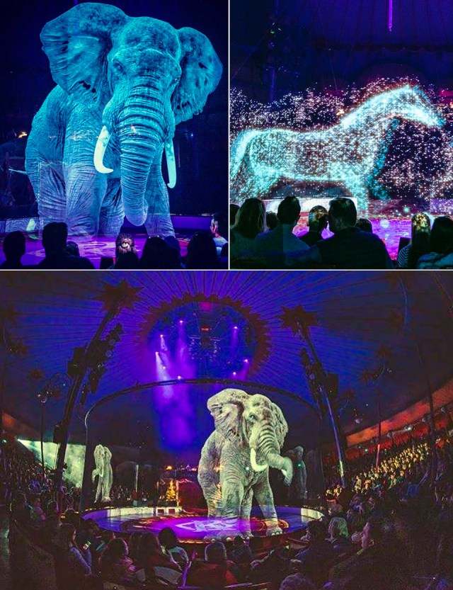 Circus Roncalli Replaces Real Animals with Lifelike 3D Holograms ...