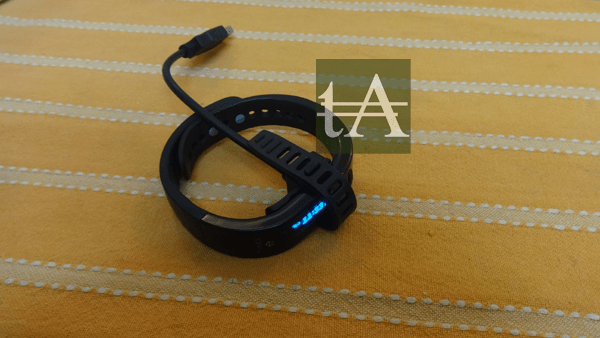 Timex Ironman Move X20 Charger