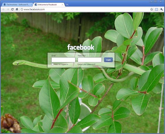 Custom_Facebook_Login_Page