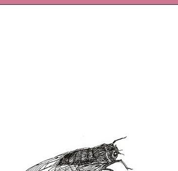 """Recension: """"Höstens hastighet"""" av Mai Van Phan"""