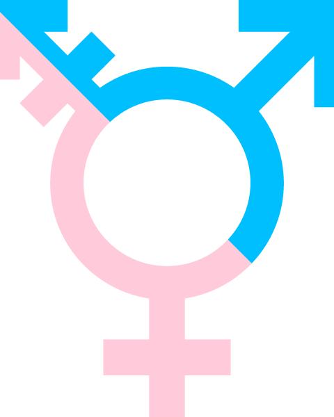 Tre nya transböcker