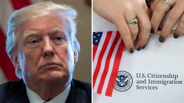 Presidente Donald Trump empezará a negociar la reforma migratoria