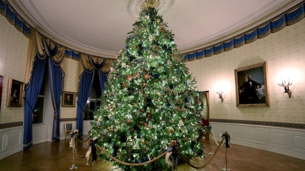 They reveal the Christmas decoration of the White House
