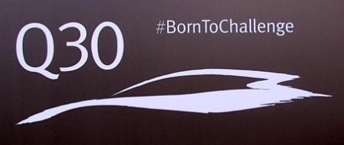 q30 born to challenge
