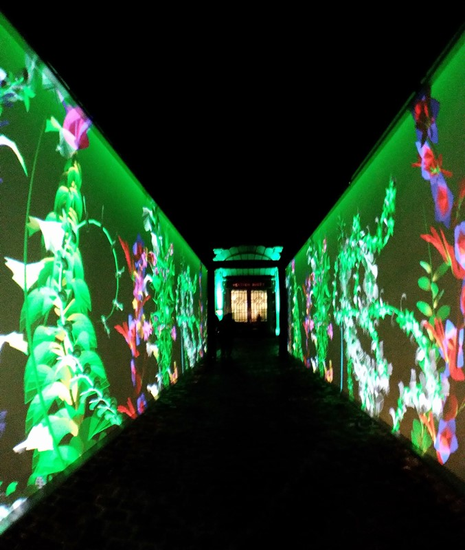 chemin video mapping perrier jouet