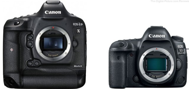 Should I Get the Canon EOS-1D X Mark II or EOS 5D Mark IV?