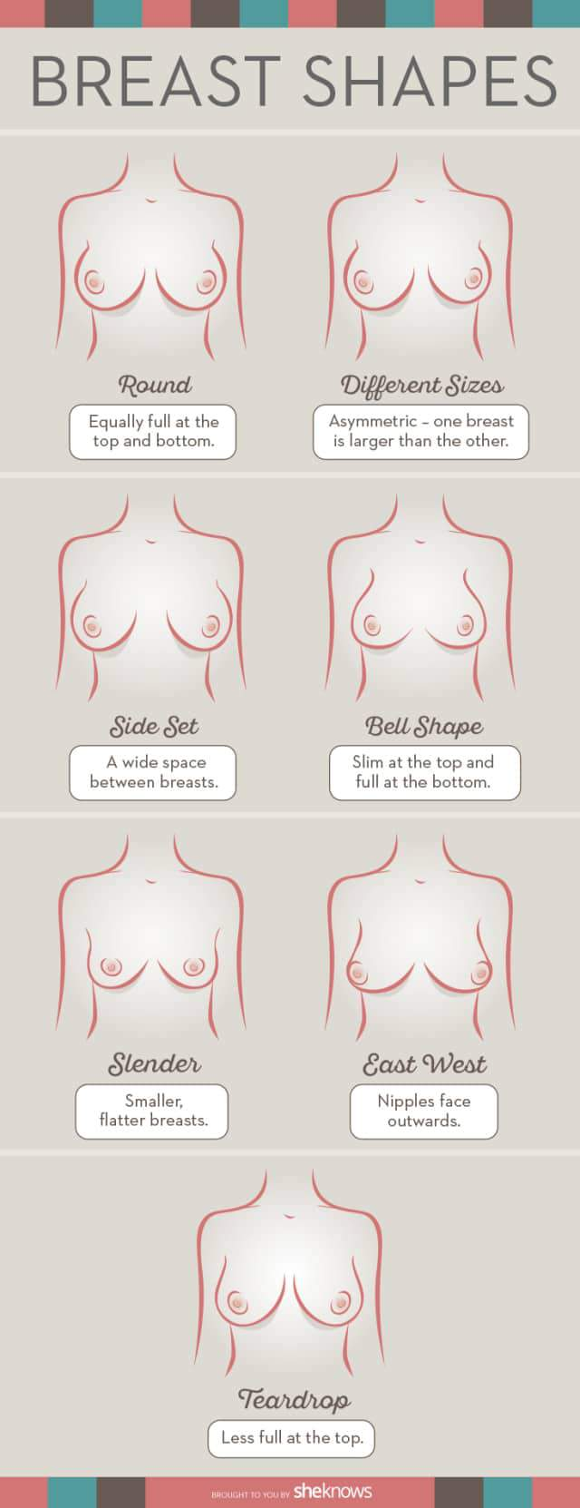 Boob Type Chart : chart, Determine, Breast, Shape, Perfect