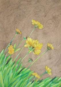 「黄色い花」