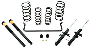 Ford Racing M-3000-ZX3 Suspension Handling Packages