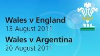 More Info AboutWales V Argentina